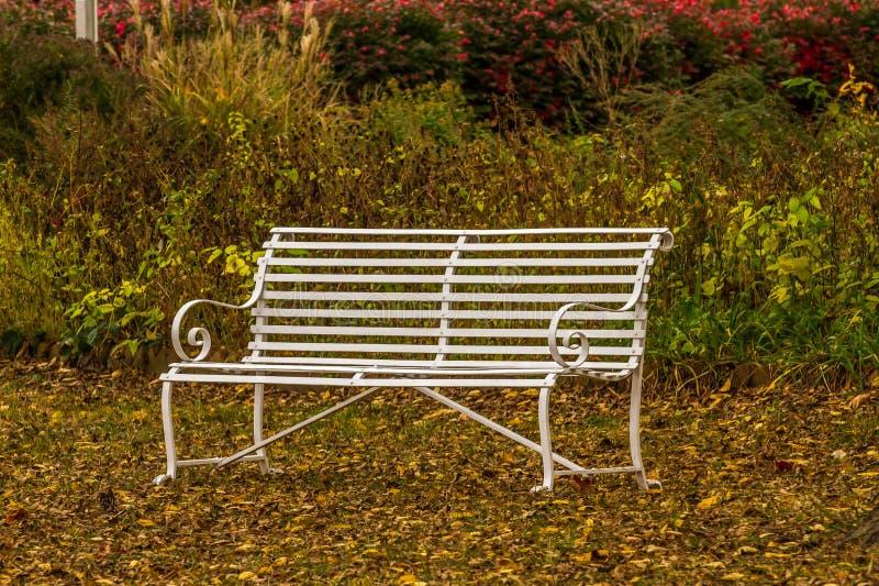 De bank van het park in de herfst royalty-vrije stock afbeelding