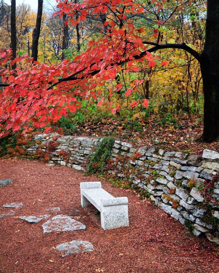 De Bank van het Park van de herfst royalty-vrije stock fotografie