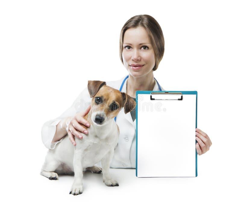 De banner van de dierenartskliniek stock fotografie