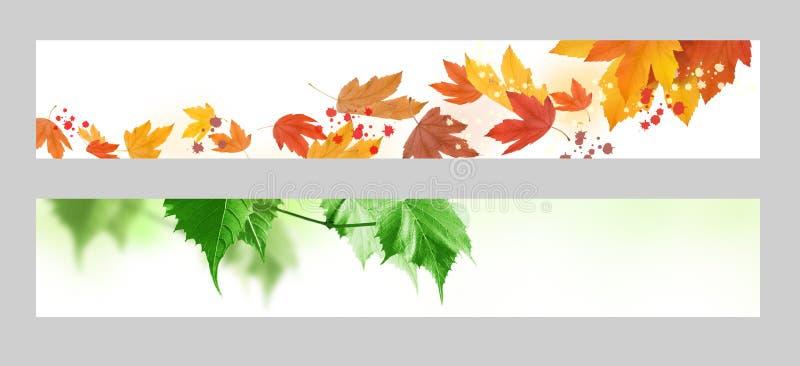 De banner van de herfst en van de lente