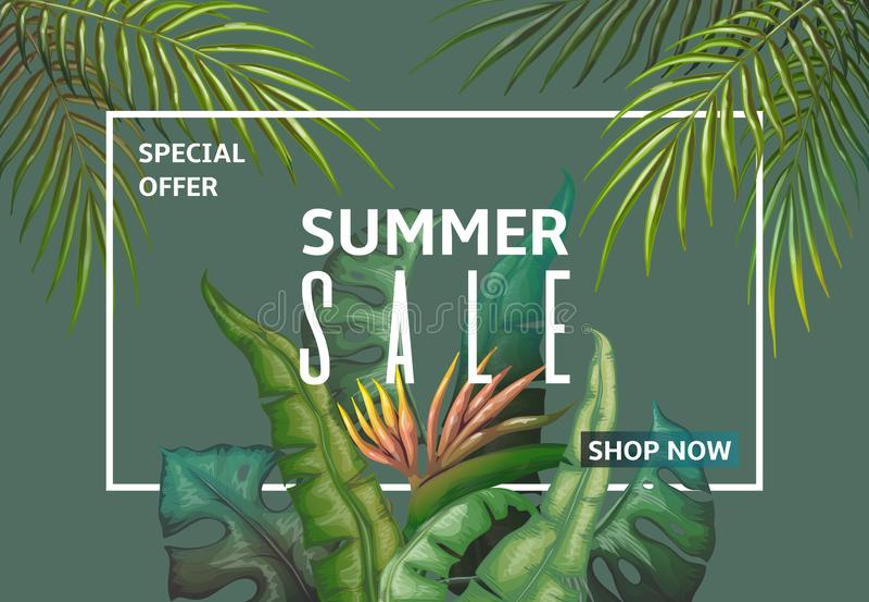De banner van de de zomerverkoop Het kader van de palmbladenkorting, de uitnodigingsprentbriefkaar van wildernisinstallaties, wee royalty-vrije illustratie