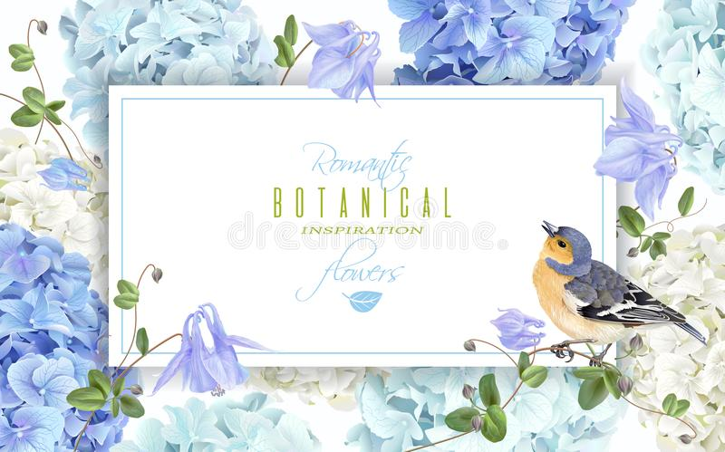De bannerblauw van de hydrangea hortensiavogel vector illustratie
