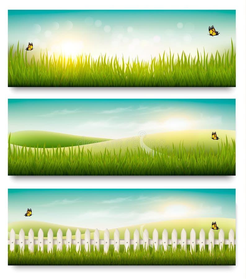 De banners van de aardzomer met groen gras en blauwe hemel stock illustratie