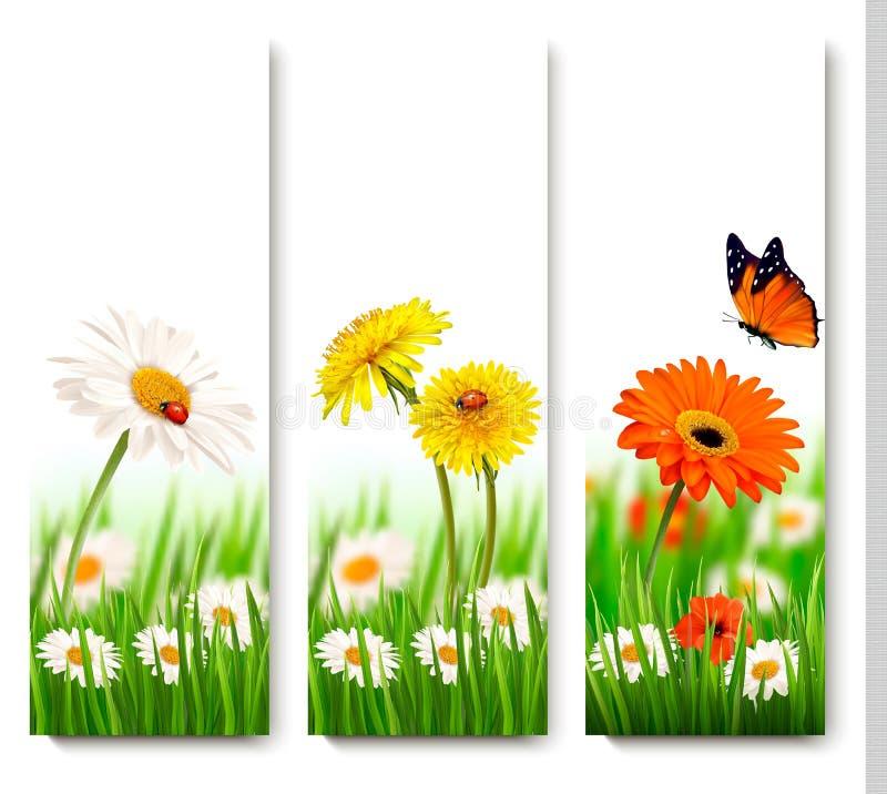 De banners van de de zomeraard met kleurrijke bloemen en vlinder royalty-vrije illustratie