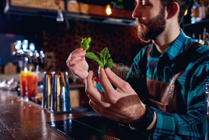 De barman die bij bar dichte omhooggaand van twijg van munt houden royalty-vrije stock afbeeldingen