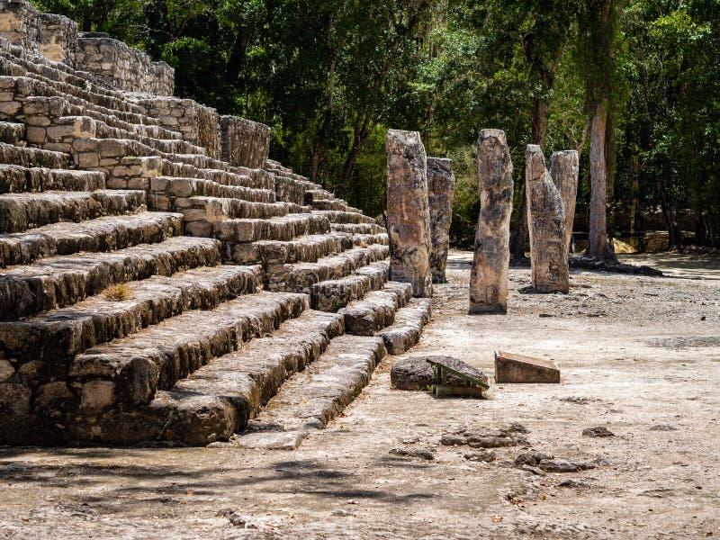 De basis van Mayan ruïneert met stelas en een bos op de achtergrond royalty-vrije stock foto