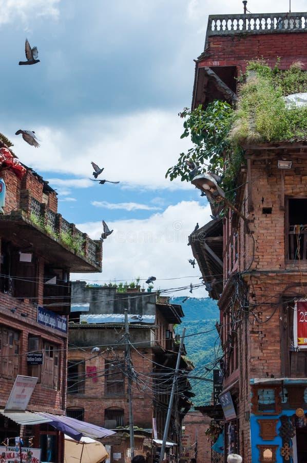 De bazaargebouwen en vogels van Nepal in de hemel stock afbeeldingen