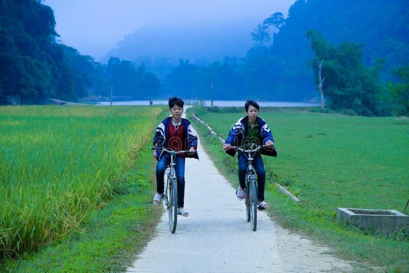 De bedelaars zijn Meren/Vietnam, 02/11/2017: Twee lokale Vietnamese jongens op hun manier aan school door een padieveld tijdens z royalty-vrije stock foto's