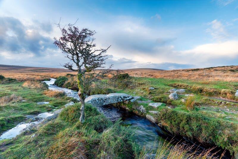 De Beek van Walla op Dartmoor stock fotografie