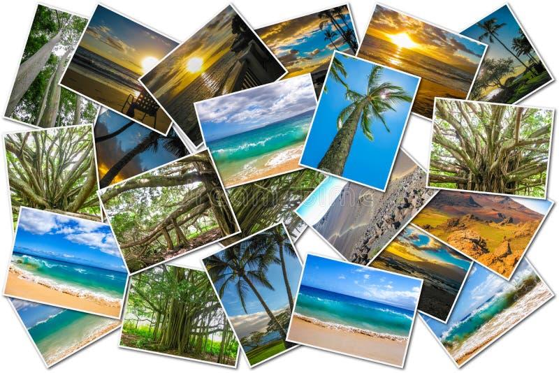 De beeldencollage van Maui stock afbeelding