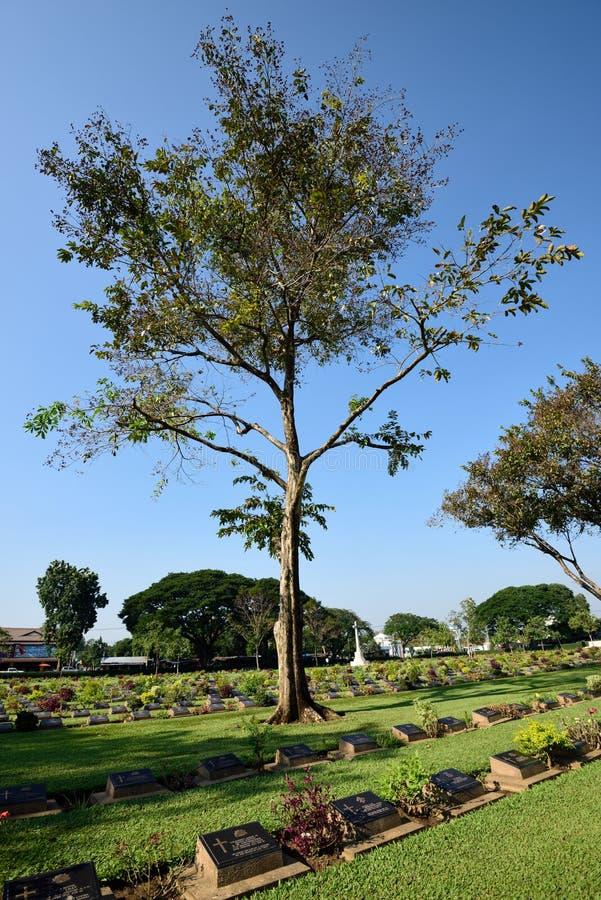 De Begraafplaats van de Kanchanaburioorlog, Thailand stock foto
