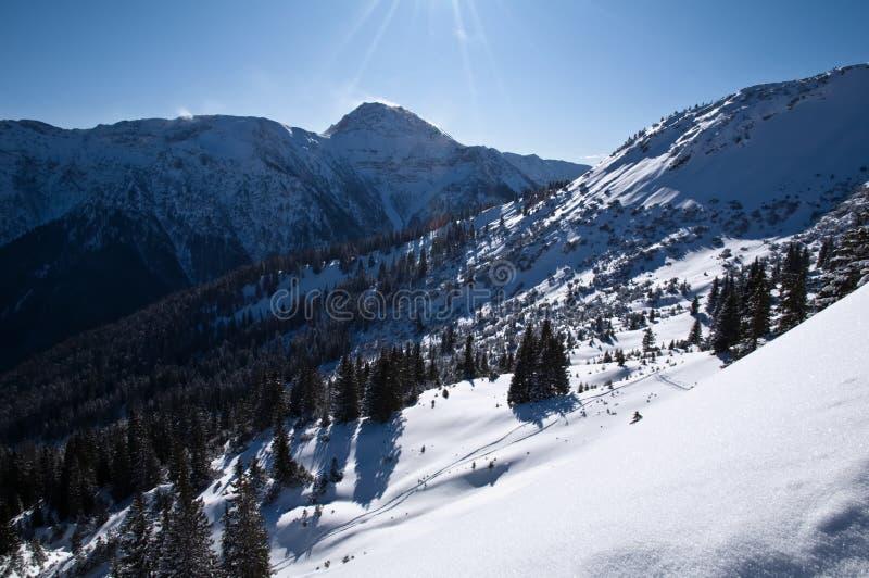 De Beierse bergen van Alpen stock afbeeldingen