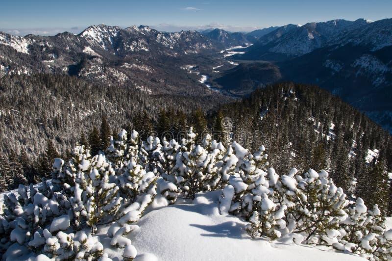 De Beierse bergen van Alpen royalty-vrije stock foto's