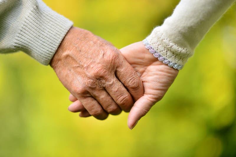 De bejaarde handen van de paarholding