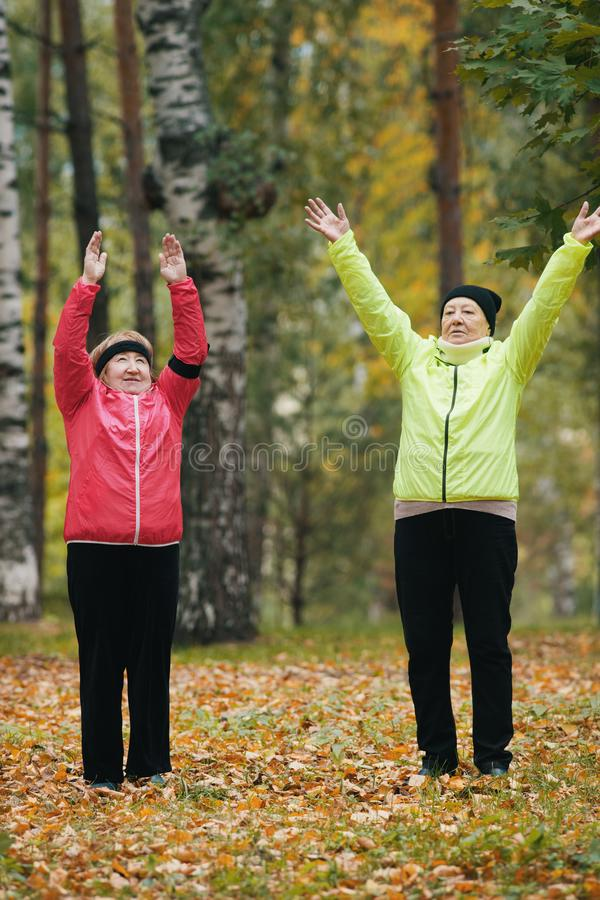 De bejaarden voeren een opwarming uit en heffen omhoog hun handen in het de herfstpark na op een Skandinavische gang royalty-vrije stock afbeeldingen