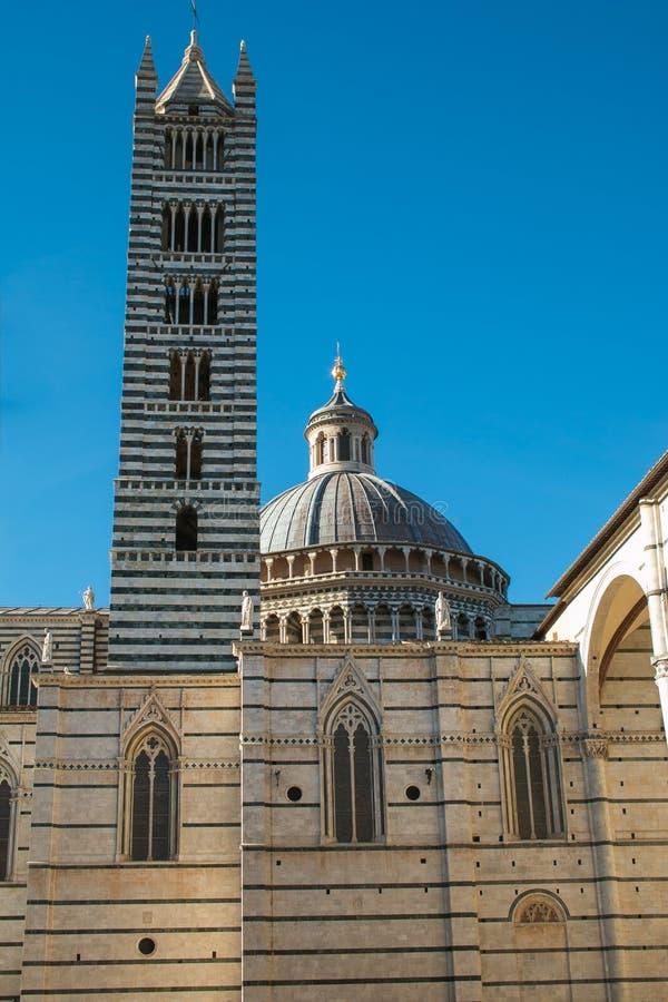 De belangrijkste kathedraal van Siena Italy met lange gestreepte toren stock foto
