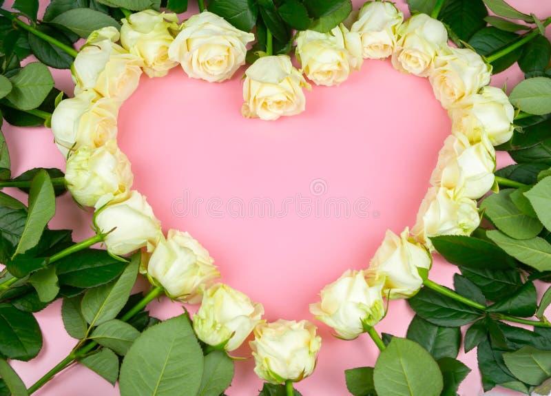 De belles roses blanches sont présentées sous forme de coeur sur un fond rose image stock