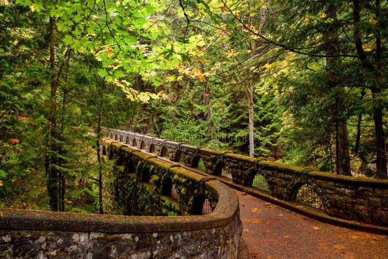 De bemoste sleep van de steenbrug door weelderig bos stock foto