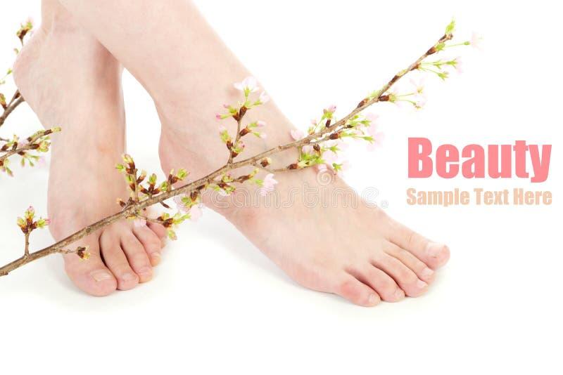 De benen en de bloem van de schoonheid stock afbeeldingen