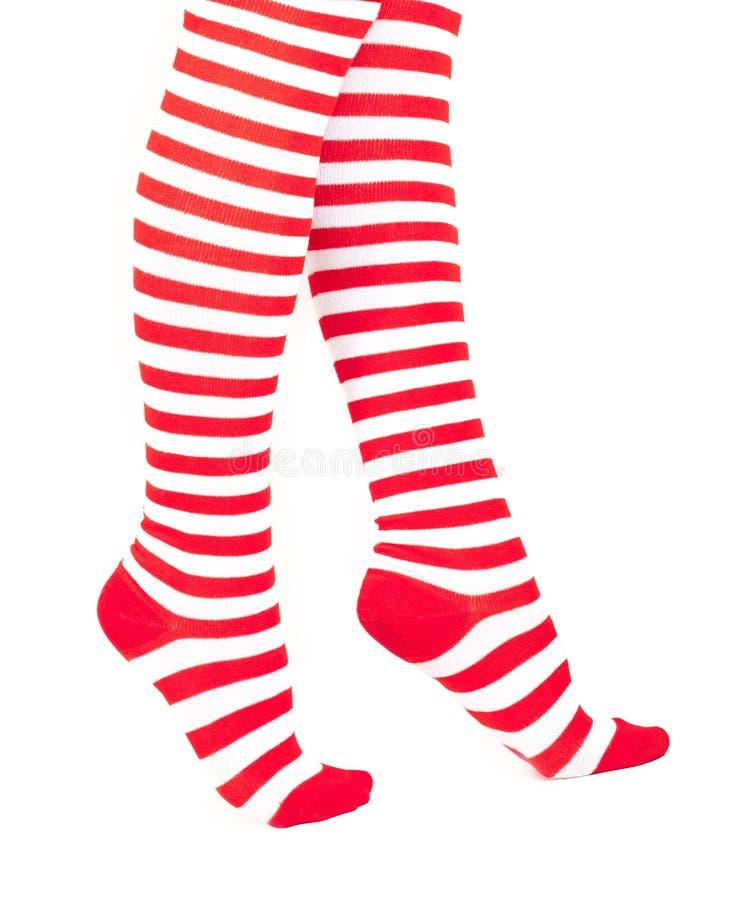 De benen van de vrouw in kleuren rode sokken stock afbeelding