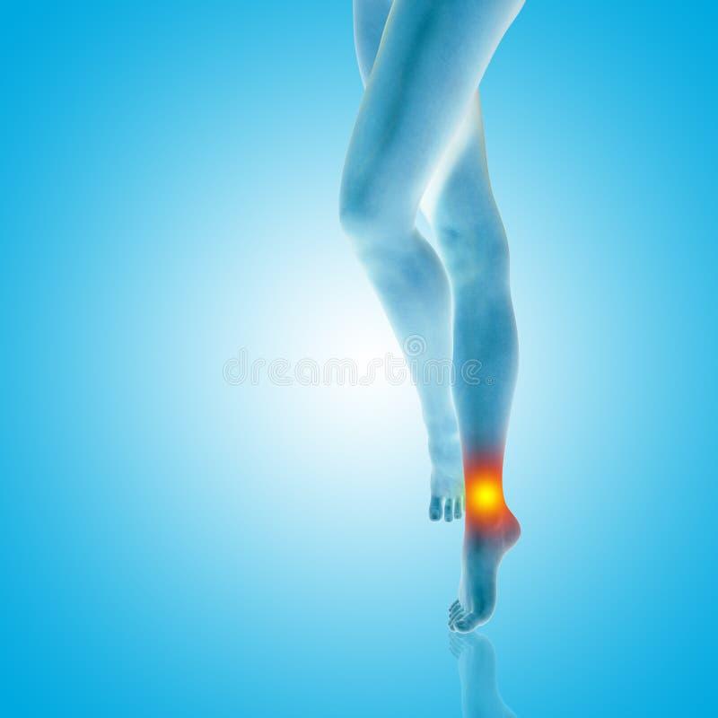 De benenvoeten van het vrouwenmeisje met een gekwetste van de enkelpijn of pijn close-up, 3D illustratie van menselijk slank gesc royalty-vrije illustratie