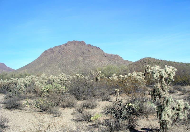 De Berg Arizona van Catback stock foto