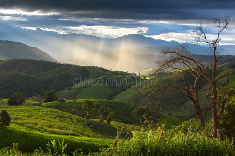 De berg in Chaing-MAI, Thailand royalty-vrije stock foto's