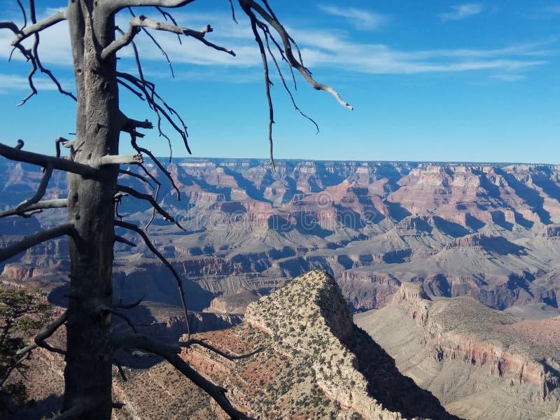 De berg glanst stock foto