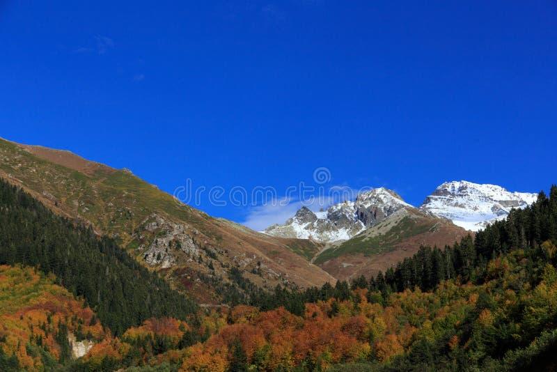 De berg met sneeuw in de herfstlandschap met kleurrijk bos royalty-vrije stock afbeeldingen
