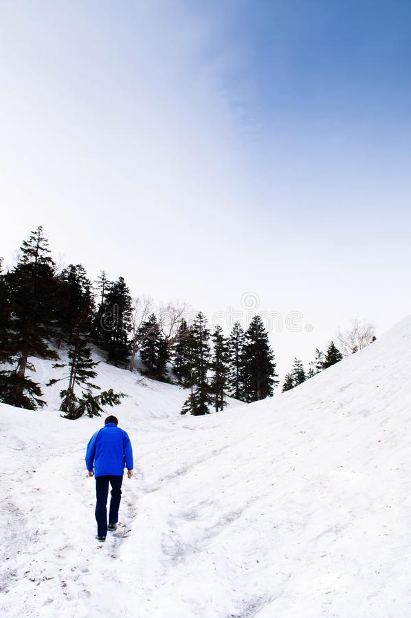 De berg van de alpen van sneeuwjapan op de Alpiene Route van Tateyama Kurobe - Japan stock afbeeldingen