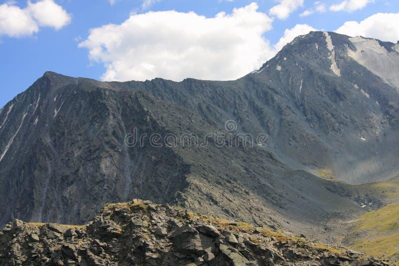 De Berg van Altai in de zomer royalty-vrije stock foto