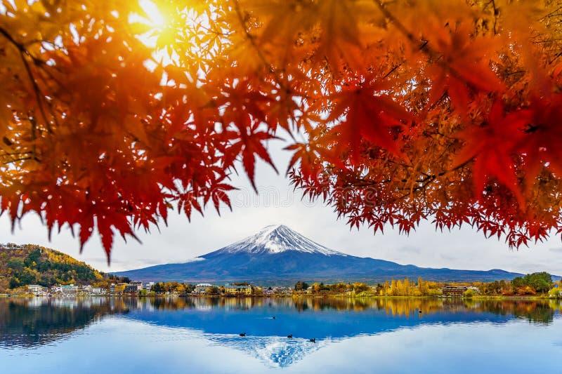 De berg van Autumn Season en Fuji-bij Kawaguchiko-meer, Japan royalty-vrije stock foto's
