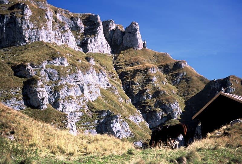 De berg van Caraiman in Bucegi stock foto's