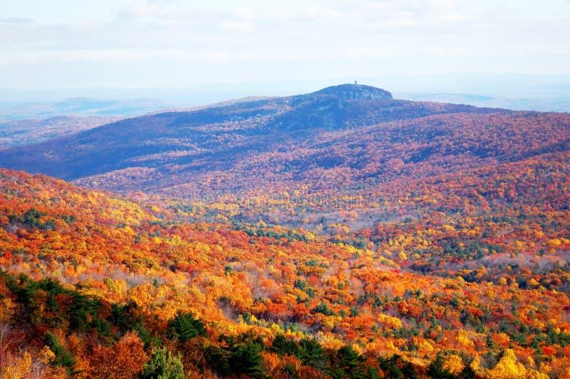 Download De berg van de herfst stock afbeelding. Afbeelding bestaande uit daling - 29502137