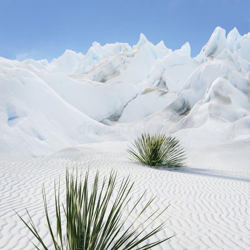 Download De berg van de suiker stock foto. Afbeelding bestaande uit summer - 10778632
