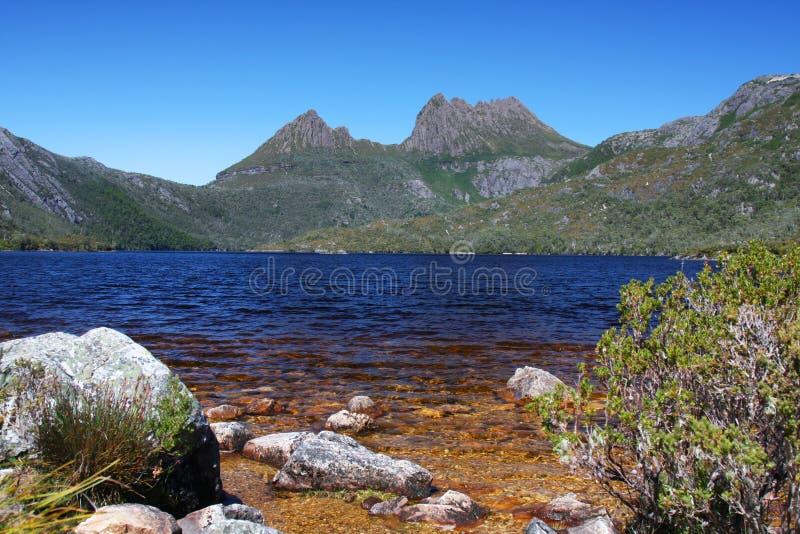 De Berg van de wieg en het Meer van de Duif in Tasmanige stock afbeeldingen