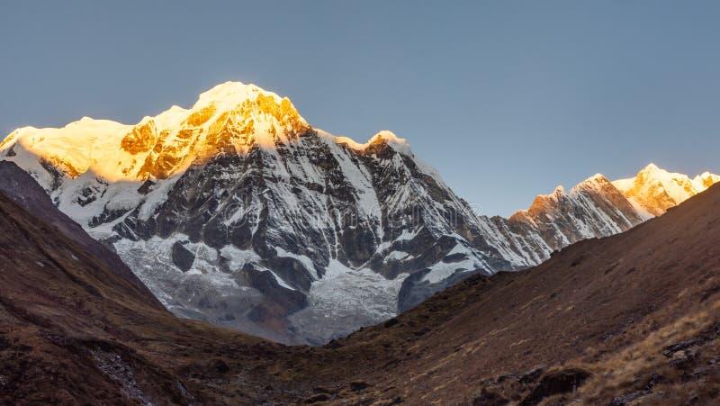 De berg van het Annapurnazuiden tijdens zonsopgang gouden uur die door eerste zonneschijn met duidelijke hemel, Himalayagebergte  stock afbeeldingen
