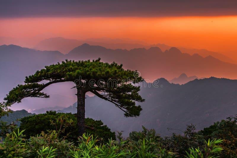 De berg van Huangshan in China stock foto's