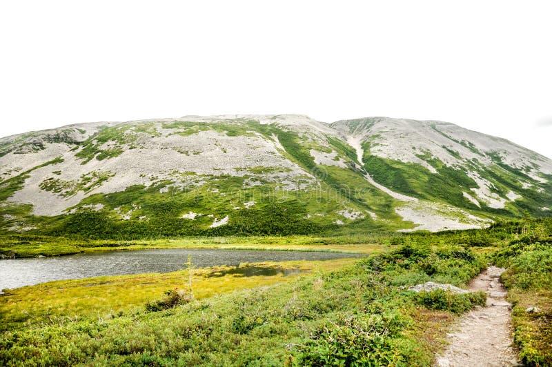 De Berg van Morne van Gros stock fotografie