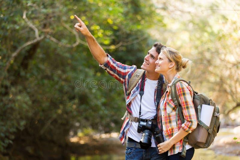 De berg van paarwandelaars stock fotografie