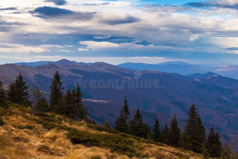 De Berg van Planina van Stara royalty-vrije stock foto