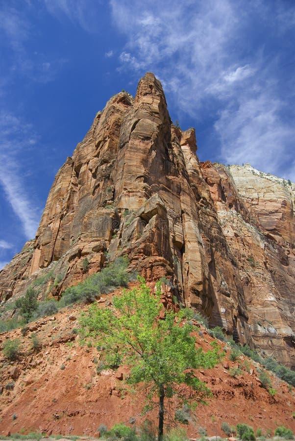 Zion Mountain stock afbeeldingen