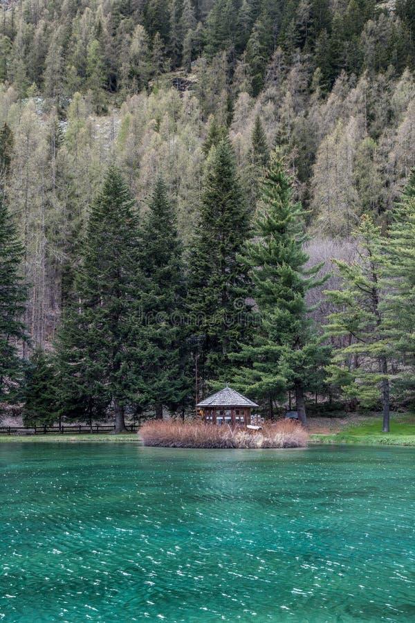 De bergen en de bomen denken in een koud meer in Gressoney na stock afbeelding