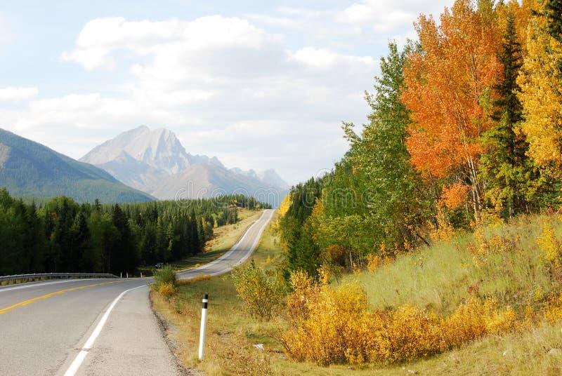 De bergen en de bossen van de kant van de weg stock foto