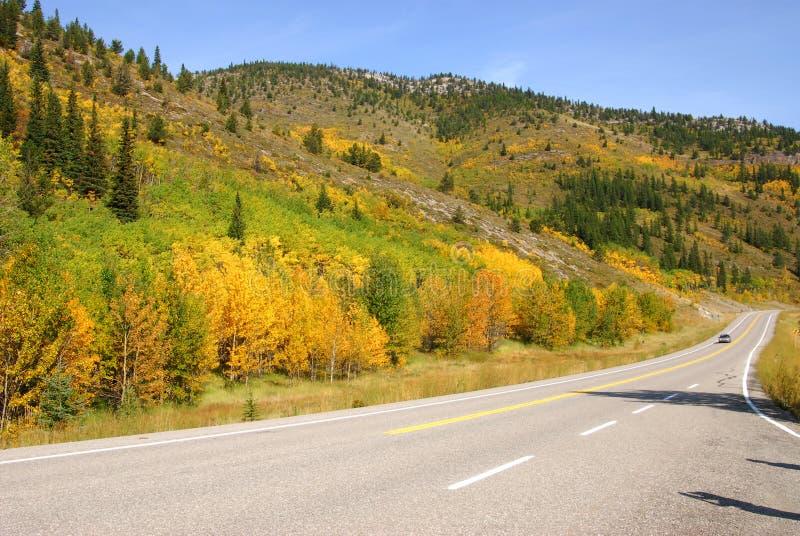 De bergen en de bossen van de kant van de weg royalty-vrije stock afbeelding