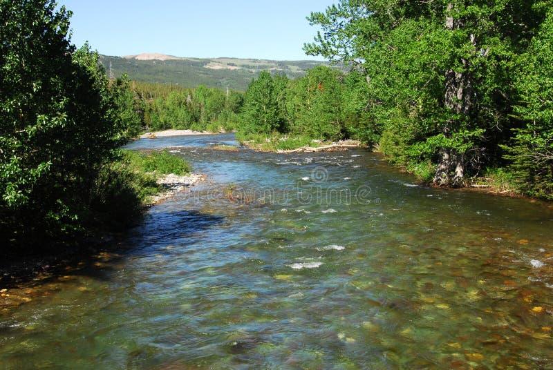 De bergen en de rivier van de zomer royalty-vrije stock foto's