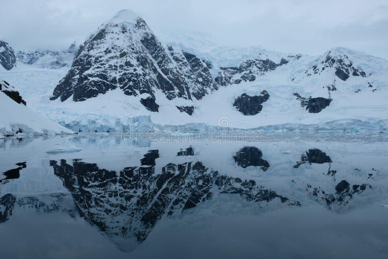 De bergen en de gletsjers van Antarctica denken in spiegel blauwe baai na op bewolkte dag stock foto