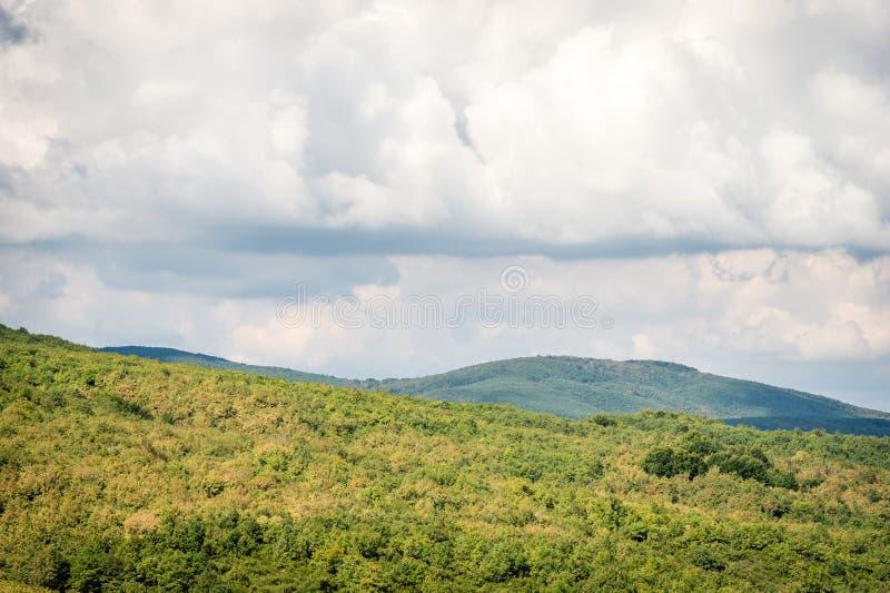 De bergen groen gras van de zomer en blauw hemellandschap stock foto