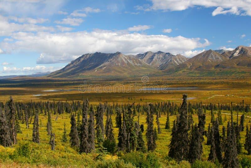 De Bergen, het Meer en de Toendra van Alaska royalty-vrije stock afbeeldingen