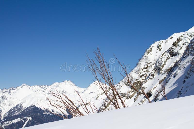 De bergen in Krasnaya Polyana, Rusland royalty-vrije stock foto's